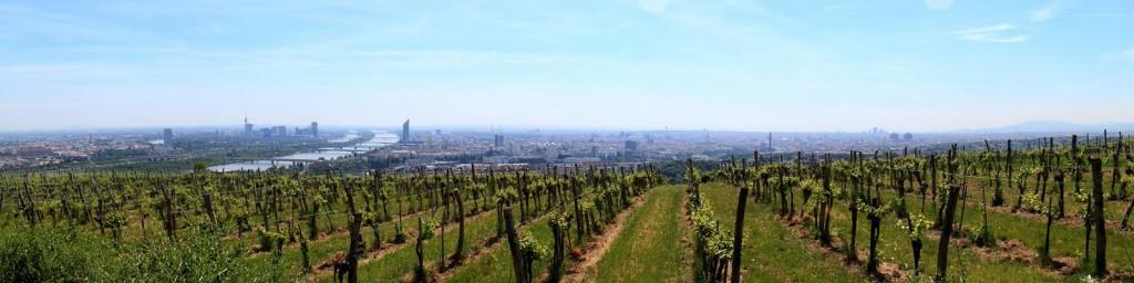 Panorama_Wien_Kahlenberg_2